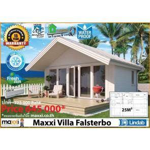 Maxxi Villa Flasterbo